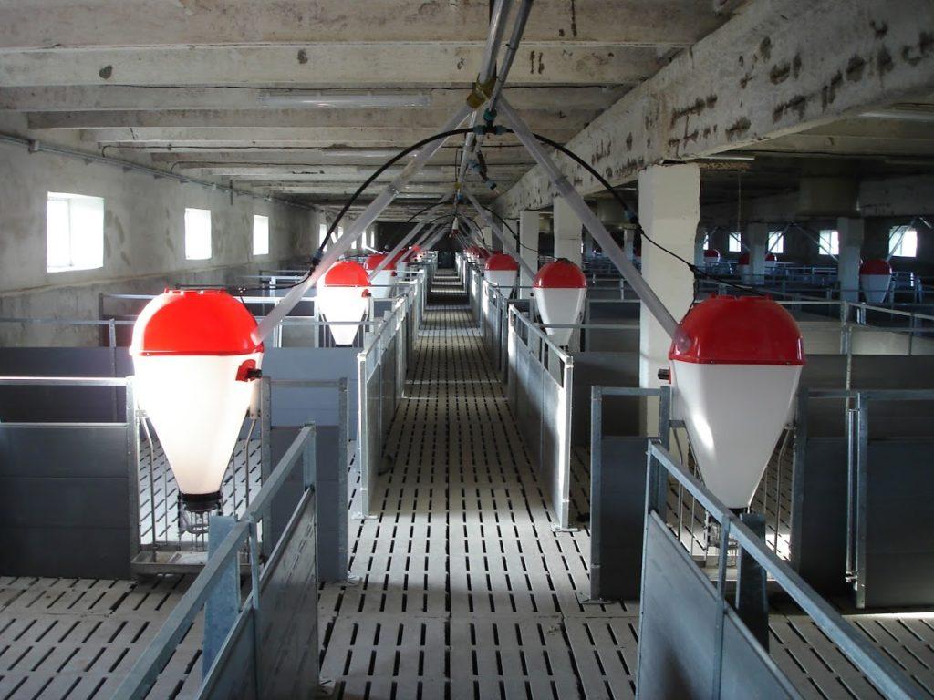 Кормоавтомат для свиней