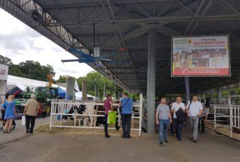 вентилятори для корівників на виставці