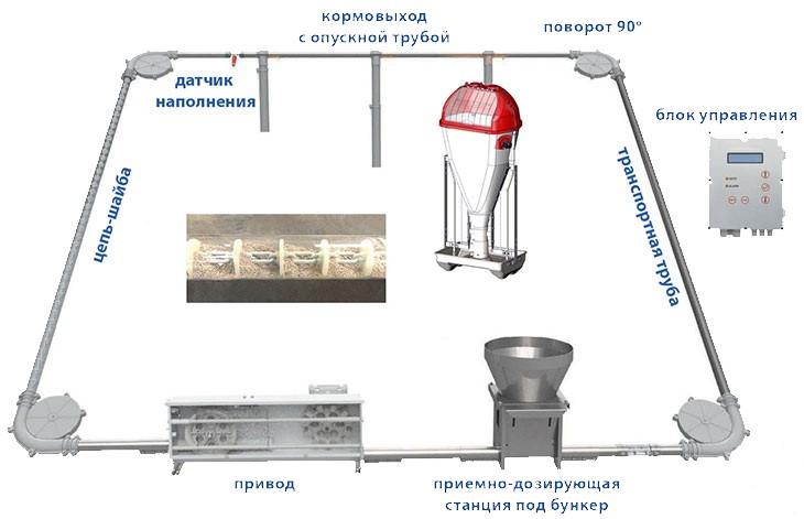 Схема работы цепь-шайбовой кормолинии